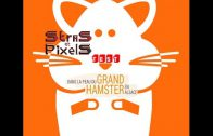 Test #4 – Dans la Peau du Grand Hamster en Alsace – Bonus #2 – 4ways 4ward – NoDevAtAll